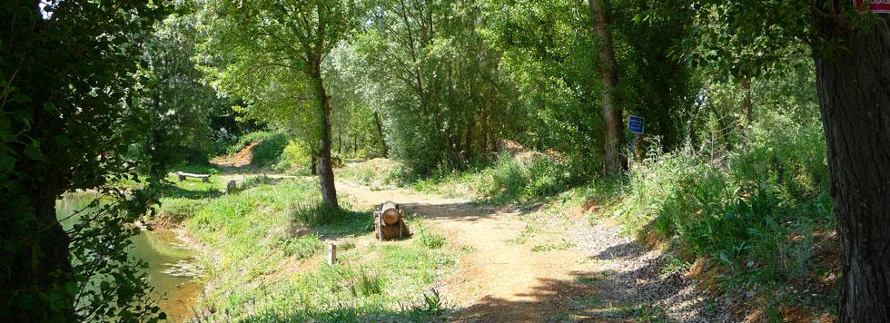 Photo d'un petit chemin autour de l'étang de la Ginouze.